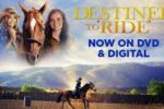 Destined to Ride (2018) BRRip HD 720p Latino Dual