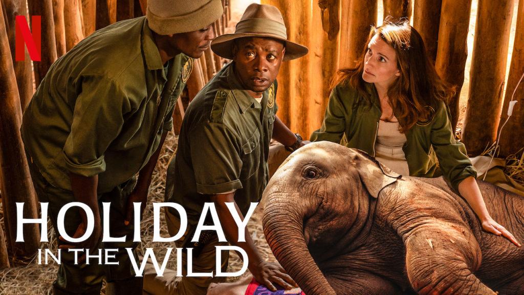 descargar Holiday In The Wild