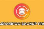 Ashampoo Backup Pro 14.06, Cree copias de seguridad de archivos importantes donde quiera