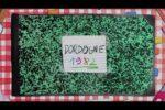 Conoce Dordogne, el hermoso juego indie francés hecho con acuarelas