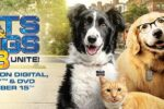 Como perros y gatos 3: ¡Todos a una! (2020) HD 1080p y 720p Latino 5.1 Dual