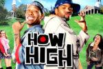 Se les subieron los humos (2001) HD 1080p Latino Dual
