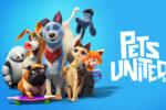 Mascotas unidas (2019) HD 1080p y 720p Latino Dual
