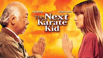 The Next Karate Kid (1994) hd latino