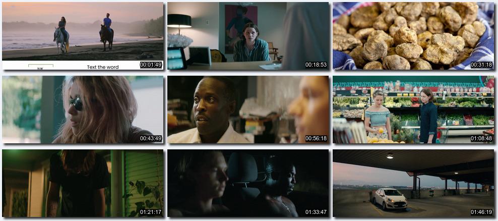 El traficante (2021) 1080p y 720p latino Dual