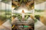 Nueve perfectos desconocidos Mini-Serie HD 720p Latino 5.1 Dual [05/08]